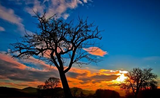 どこかノスタルジックな夕焼けの風景
